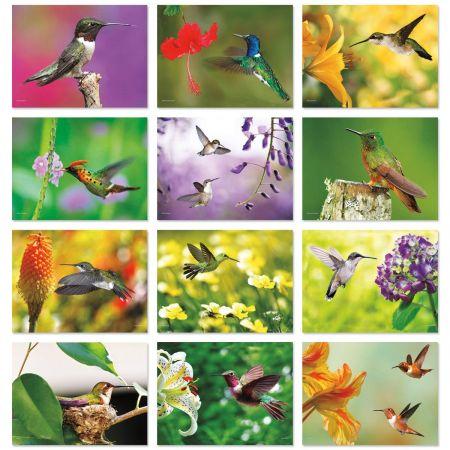 2018 Hummingbirds Wall Calendar