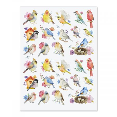 Watercolor Birds Stickers