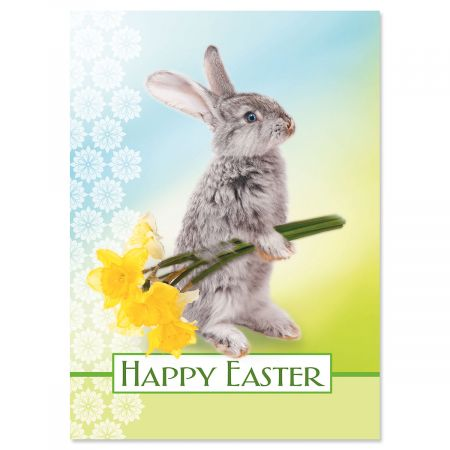 Single Design Garden Bunny Easter Cards