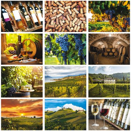 2019 Wine Lovers Wall Calendar