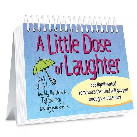 Page a Day Little Dose of Laughter Book