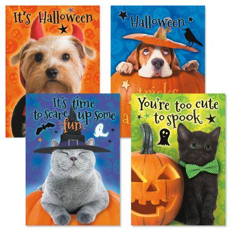 Pups & Kittens Halloween Cards