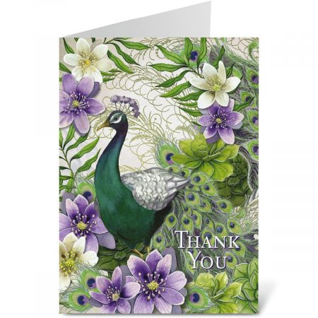 Peacock Thank You Note Cards