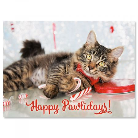 Happy Pawlidays Nonpersonalized Christmas Cards - Set of 72