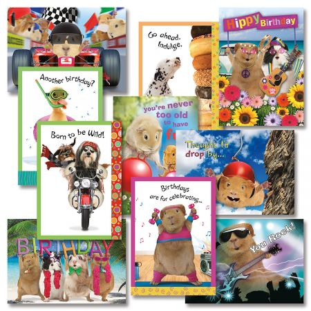 Crazy Gang Birthday Cards Value Pack