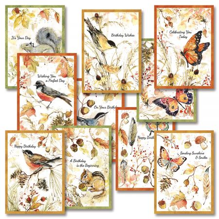 Feathers & Birds Birthday Cards Value Pack