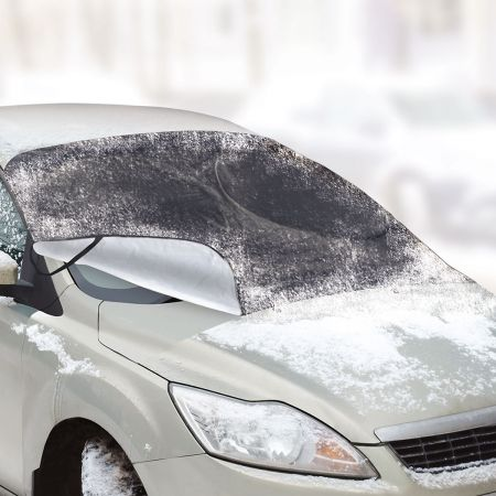 Winter Windshield Guard