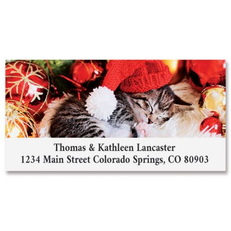 Cozy Kitten Deluxe Address Labels