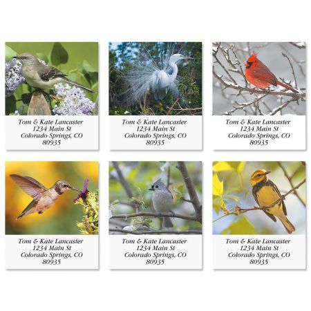Bird Lover Select Address Labels  (6 Designs)
