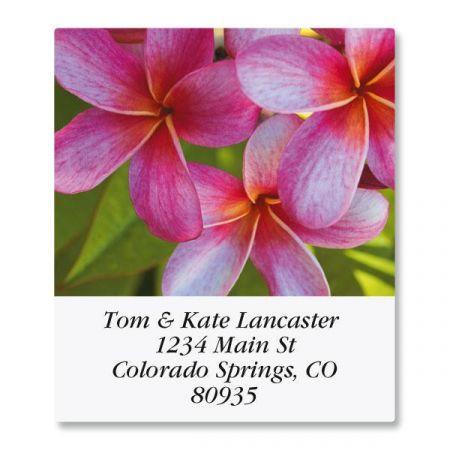 Floral Fantasy Select Address Labels  (8 Designs)