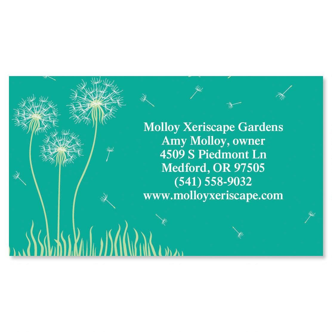Dandelion Calling Card