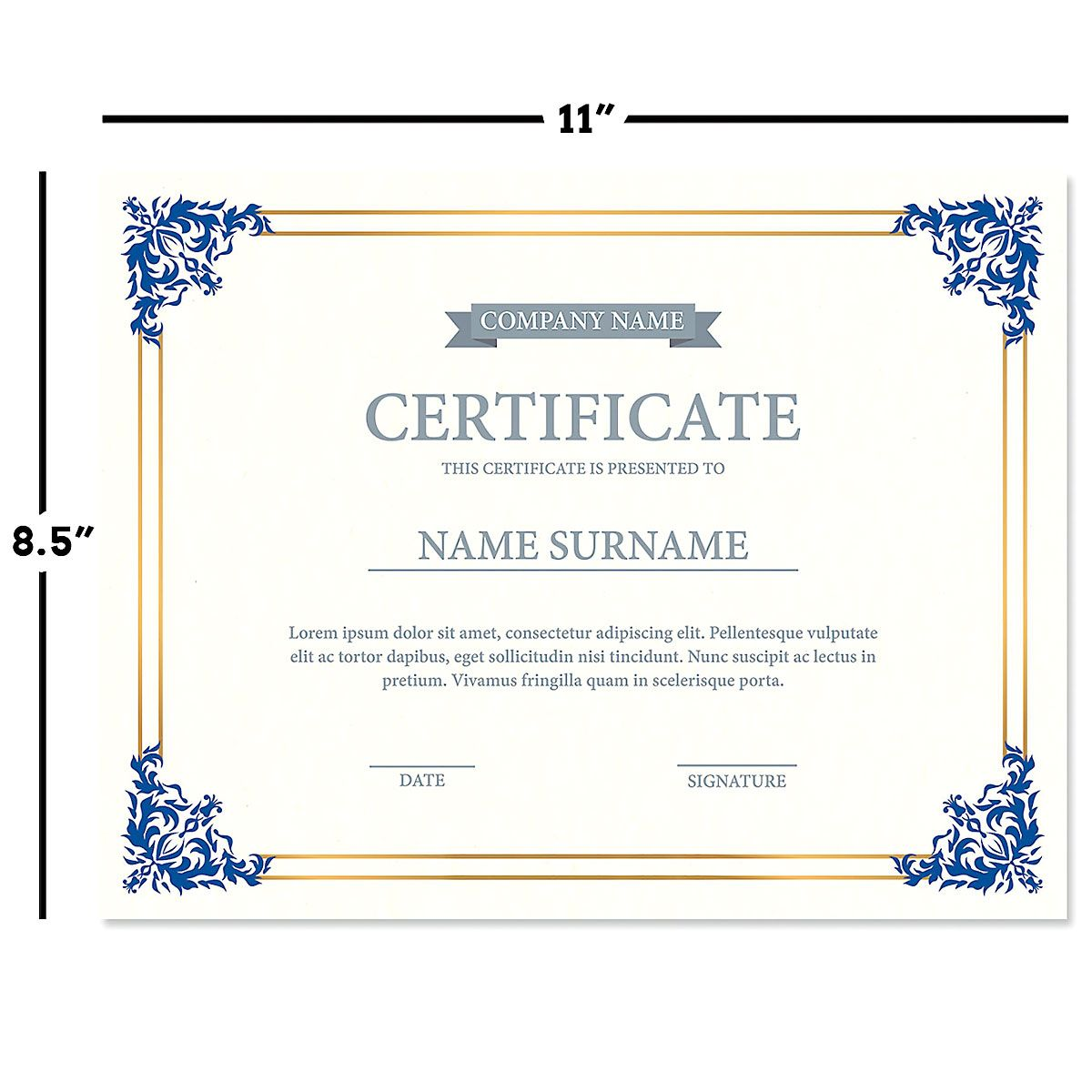 Empire Blue Certificate On White Parchment Current Catalog