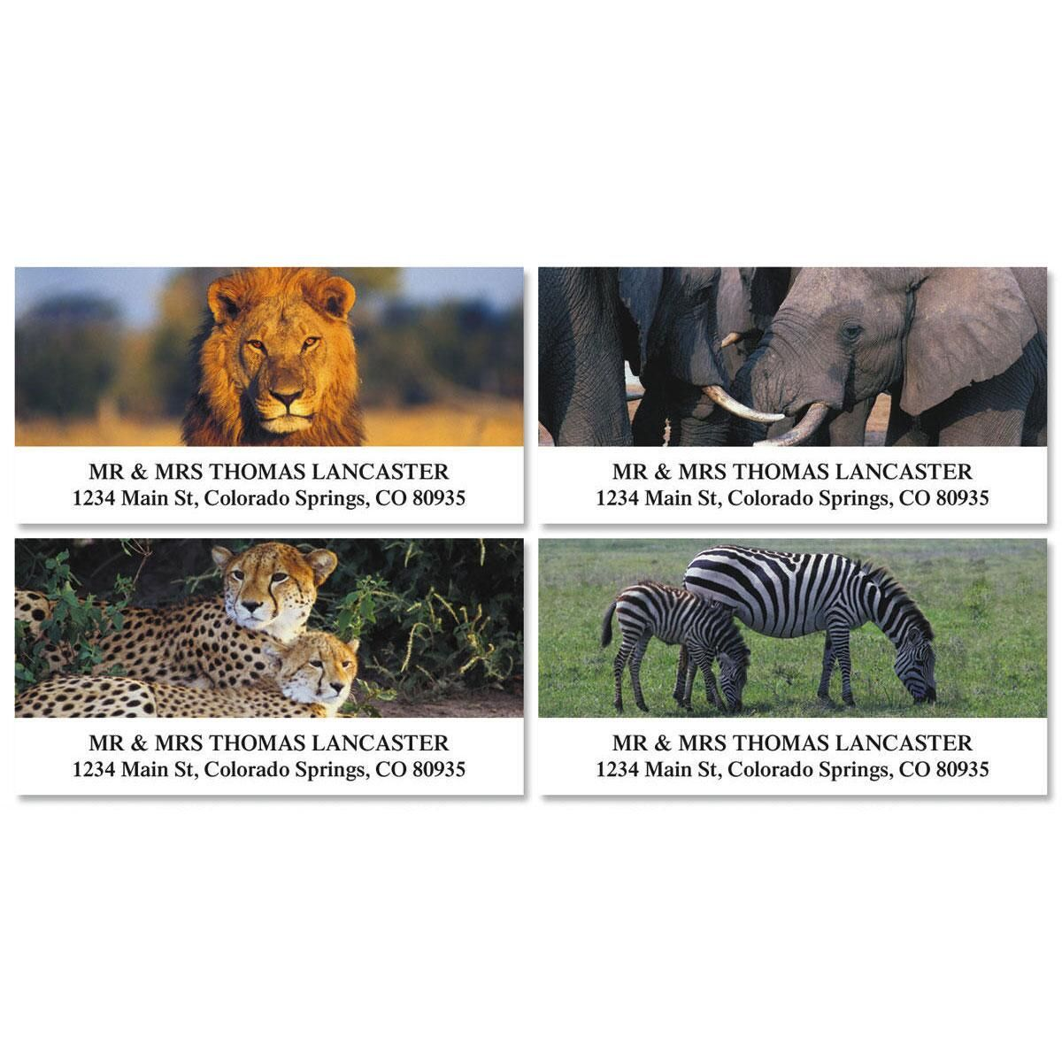 Wildlife of Africa Deluxe Address Labels  (4 designs)