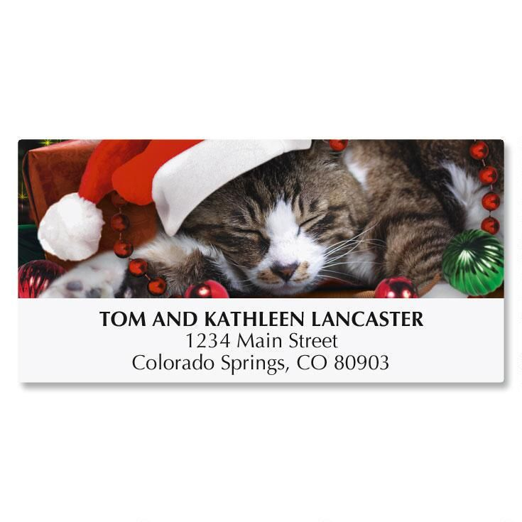 Picture This™; Christmas Cat Christmas Address Labels