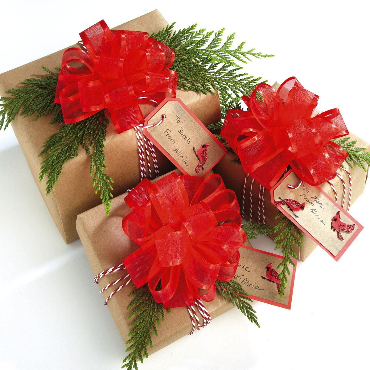 Red Organza Pull Bows - Set of 6