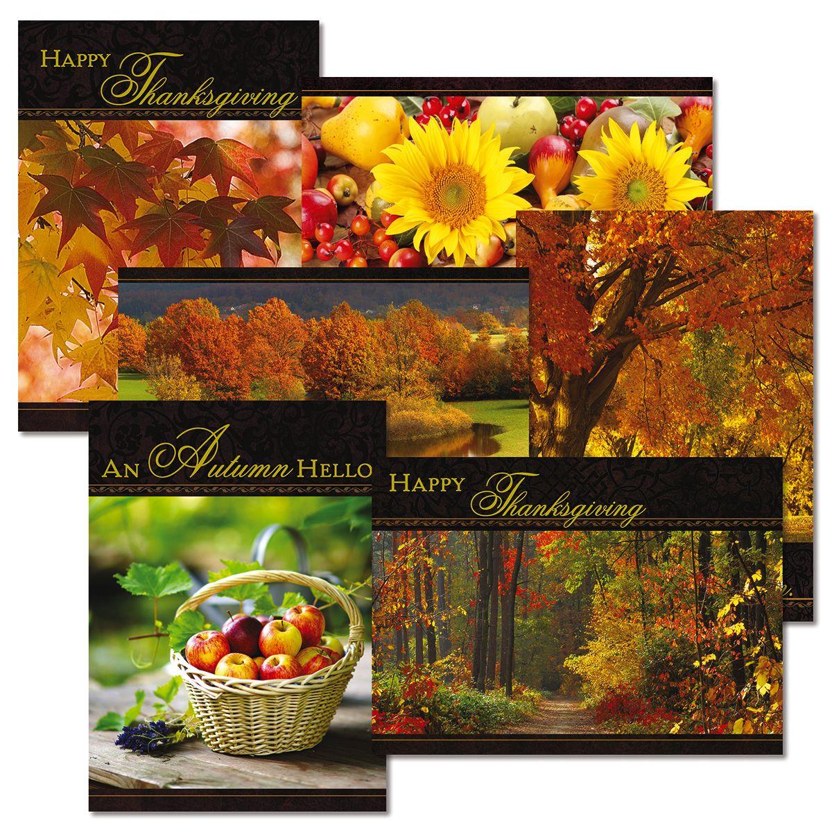 Elegant Thanksgiving Value Pack