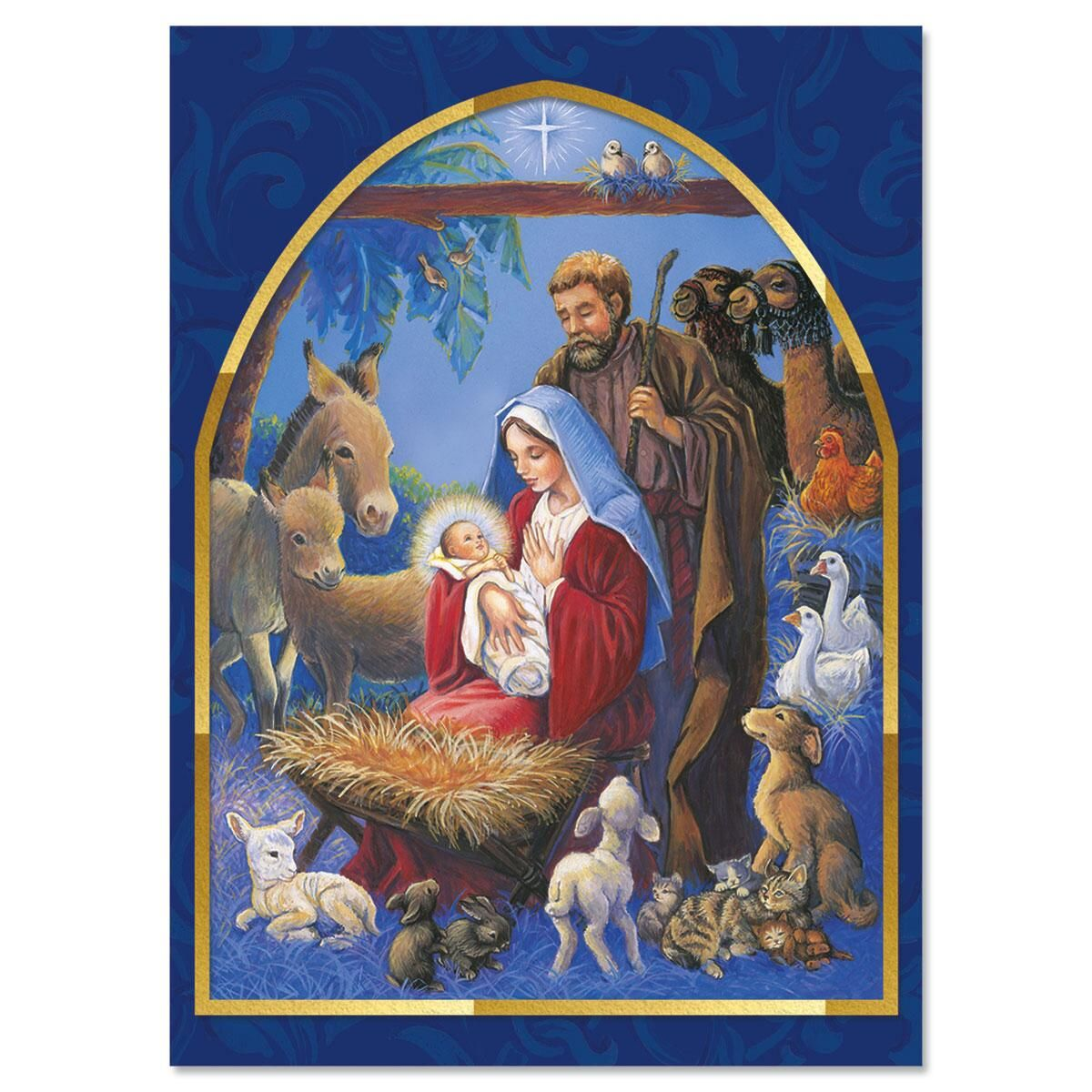 Nativity Nonpersonalized Christmas Cards - Set of 18