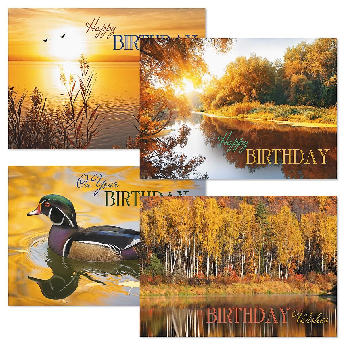 Sunrise Birthday Cards and Seals
