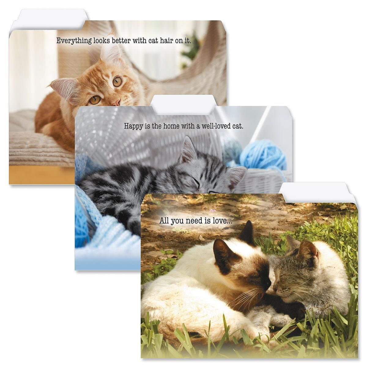 Well-Loved Cats File Folders
