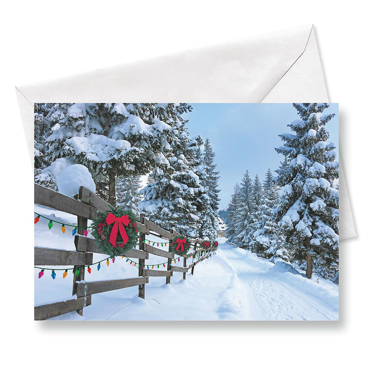 Forest Lane Christmas Cards