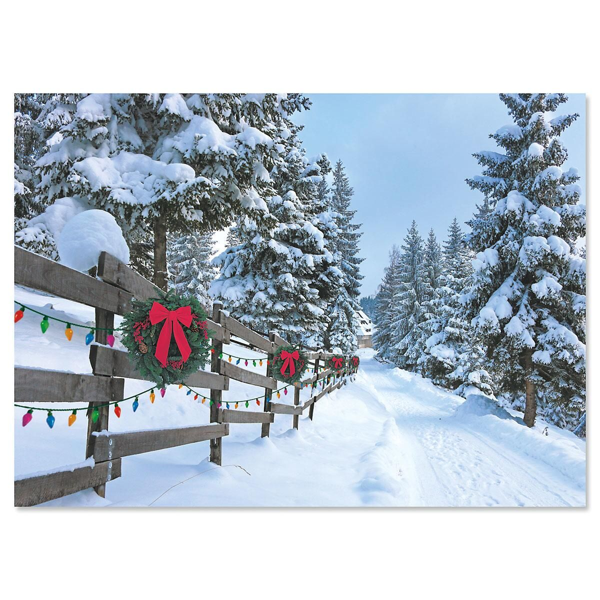 Forest Lane Personalized Christmas Cards - Set of 18