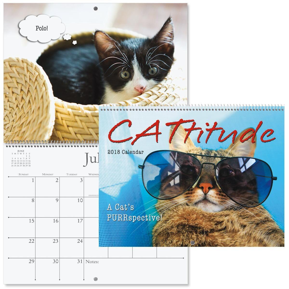 2018 Cattitudes Wall Calendar