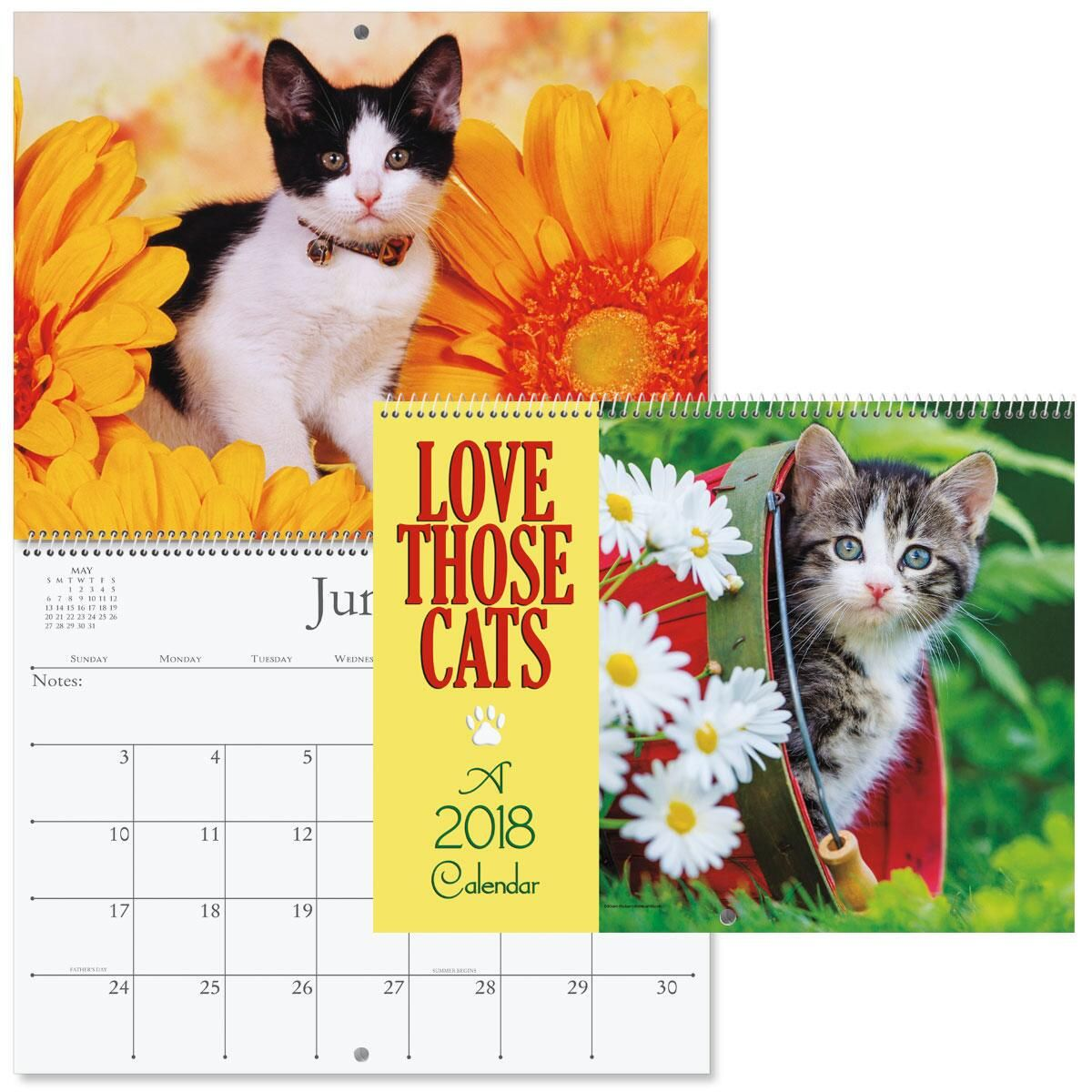2018 Love Those Cats Wall Calendar