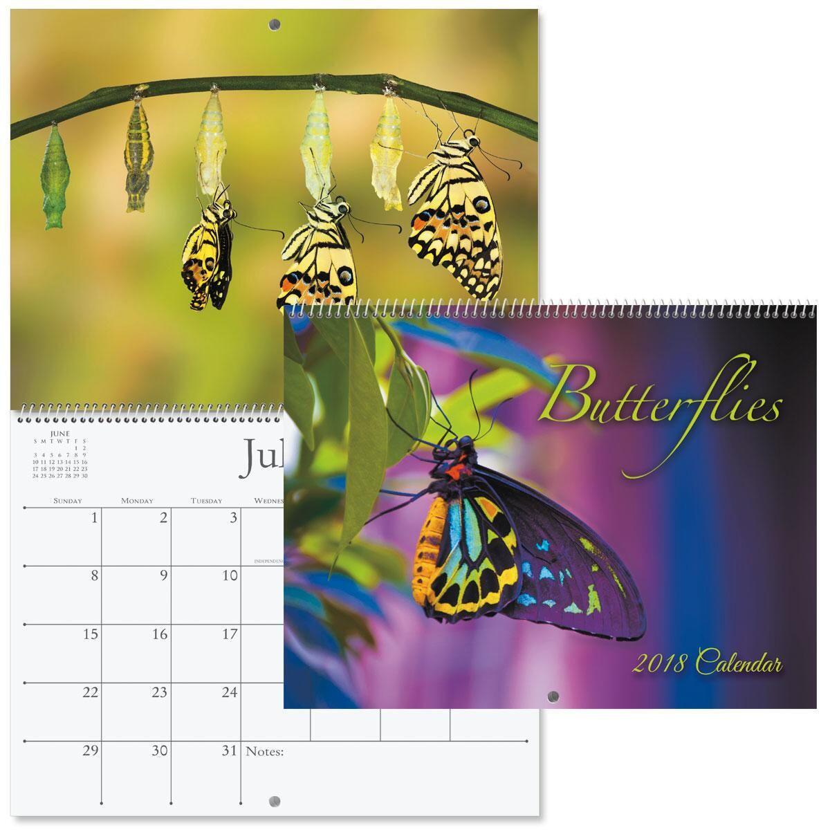 2018 Butterflies Wall Calendar