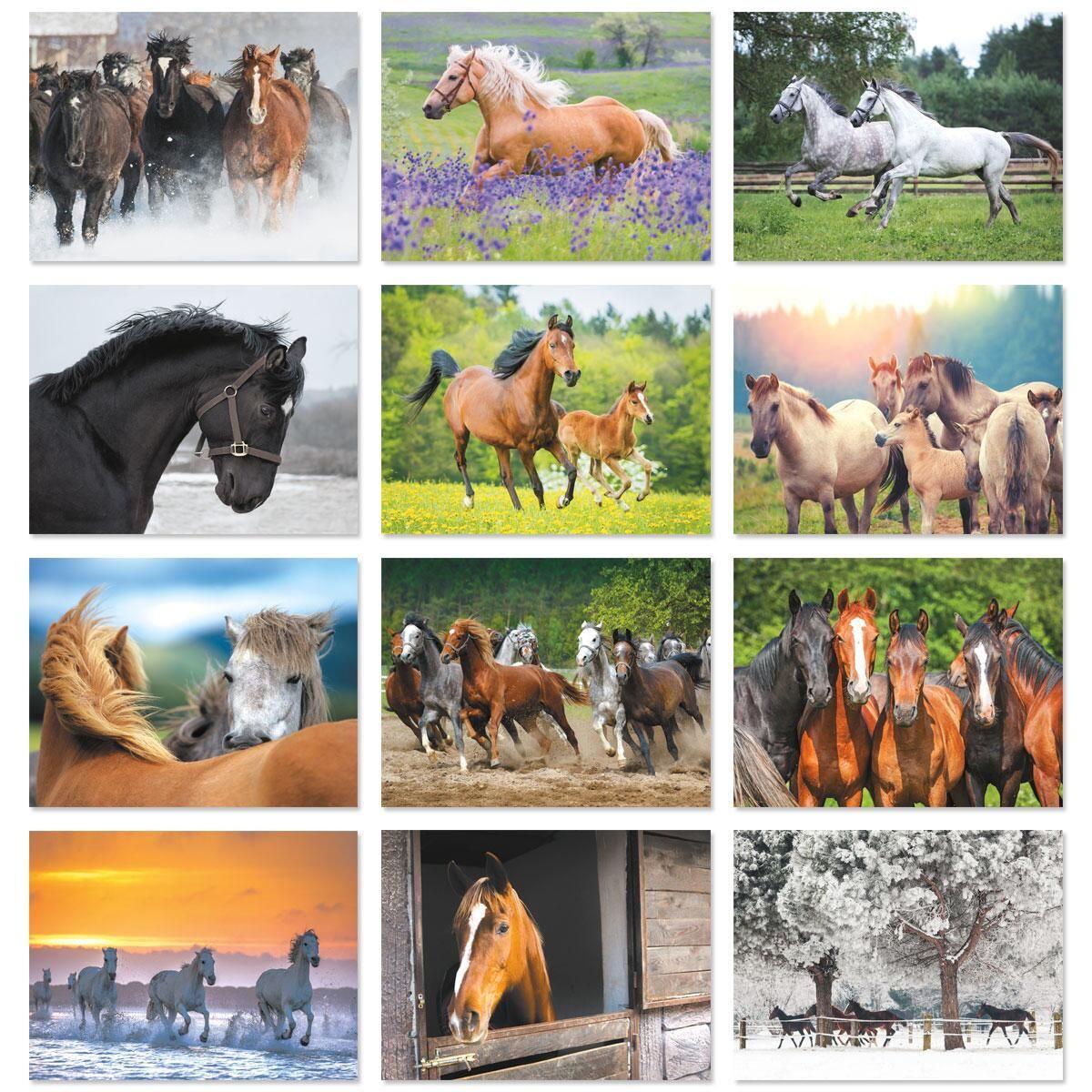 2018 Horses Wall Calendar