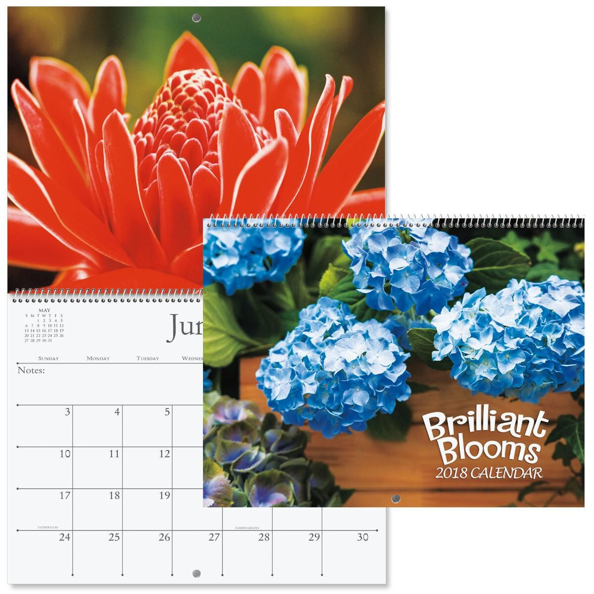2018 Brilliant Blooms Wall Calendar