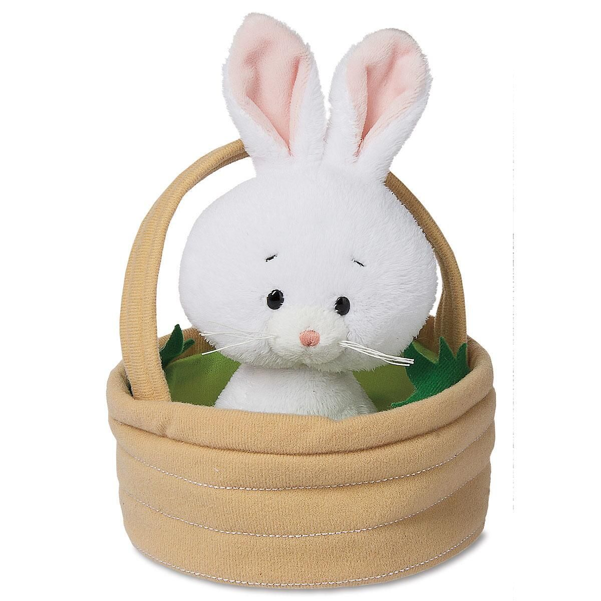 Honey Bunny In Basket