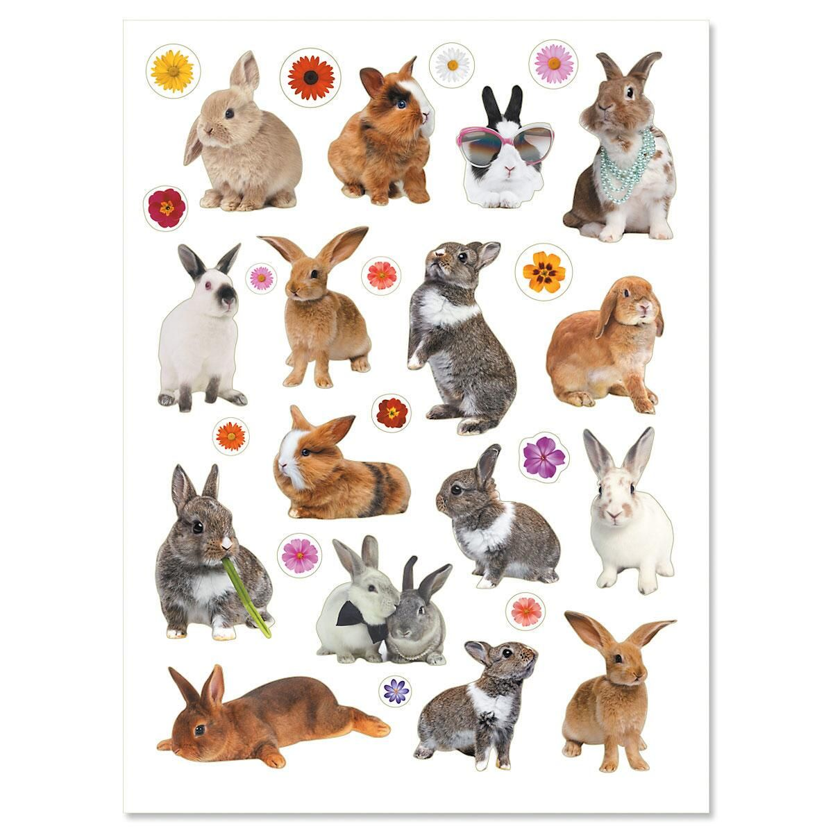 Photo Bunnies & Flowers Stickers