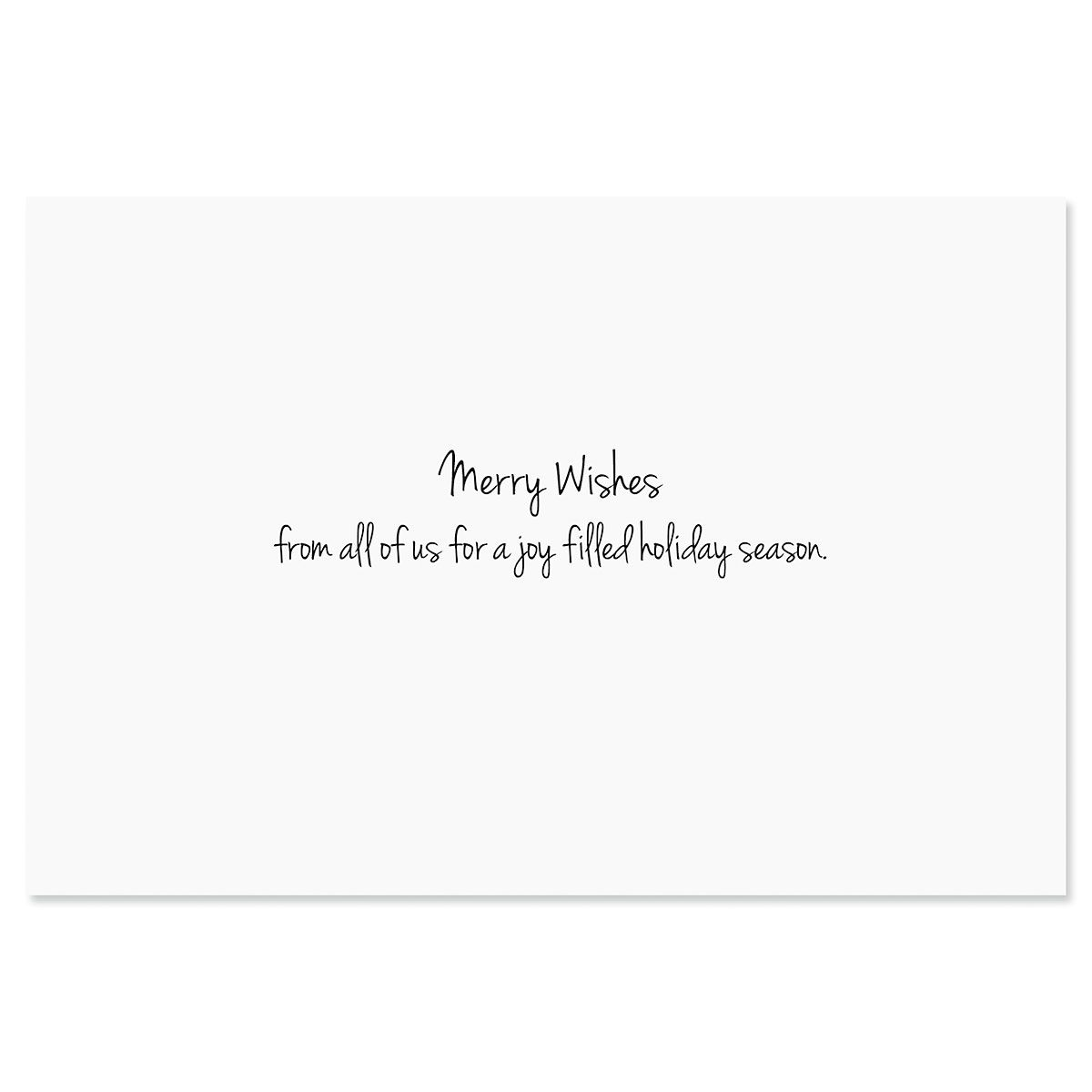 Winter Holiday Photo Sleeve Christmas Cards