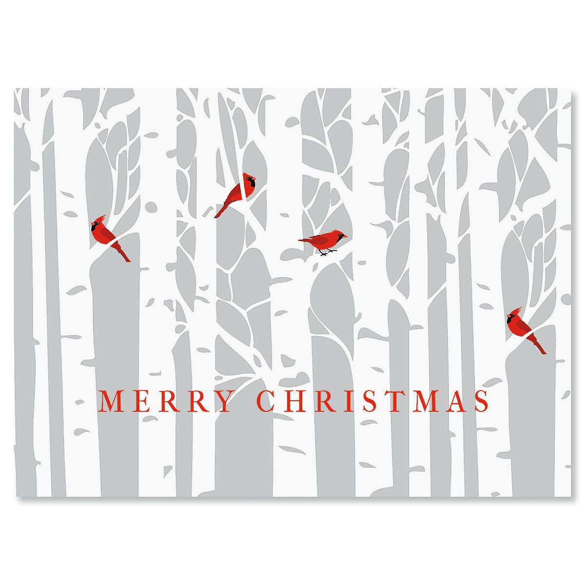 Birch Forest Personalized Christmas Cards - Set of 72