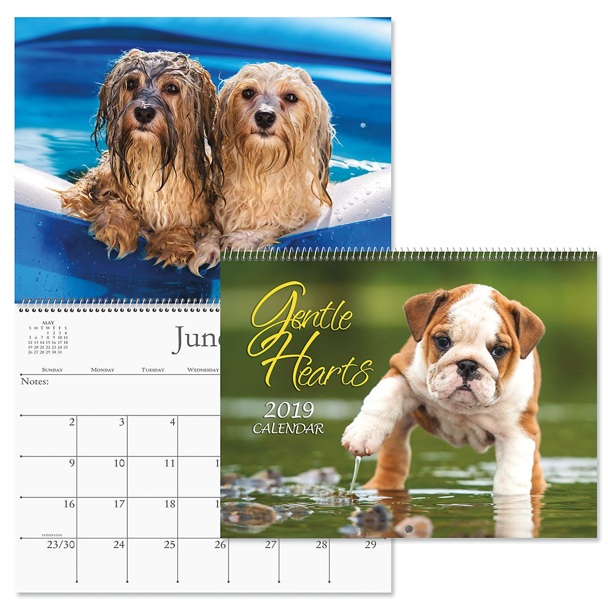 2019 Gentle Hearts Dogs Wall Calendar