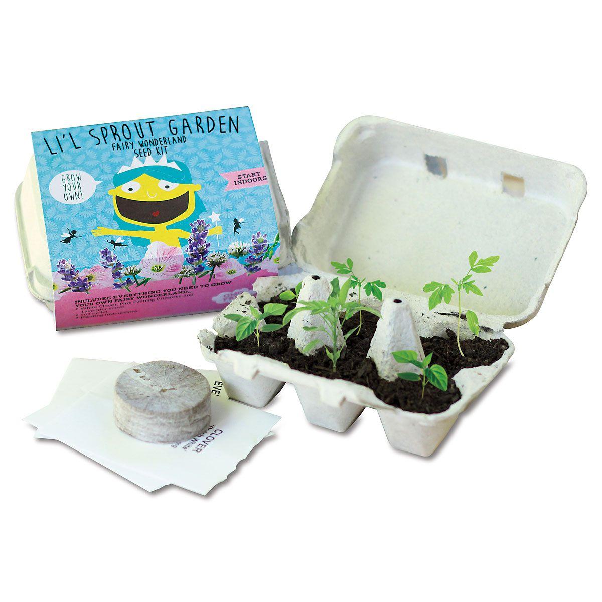 Li'l Sprout Fairy Garden