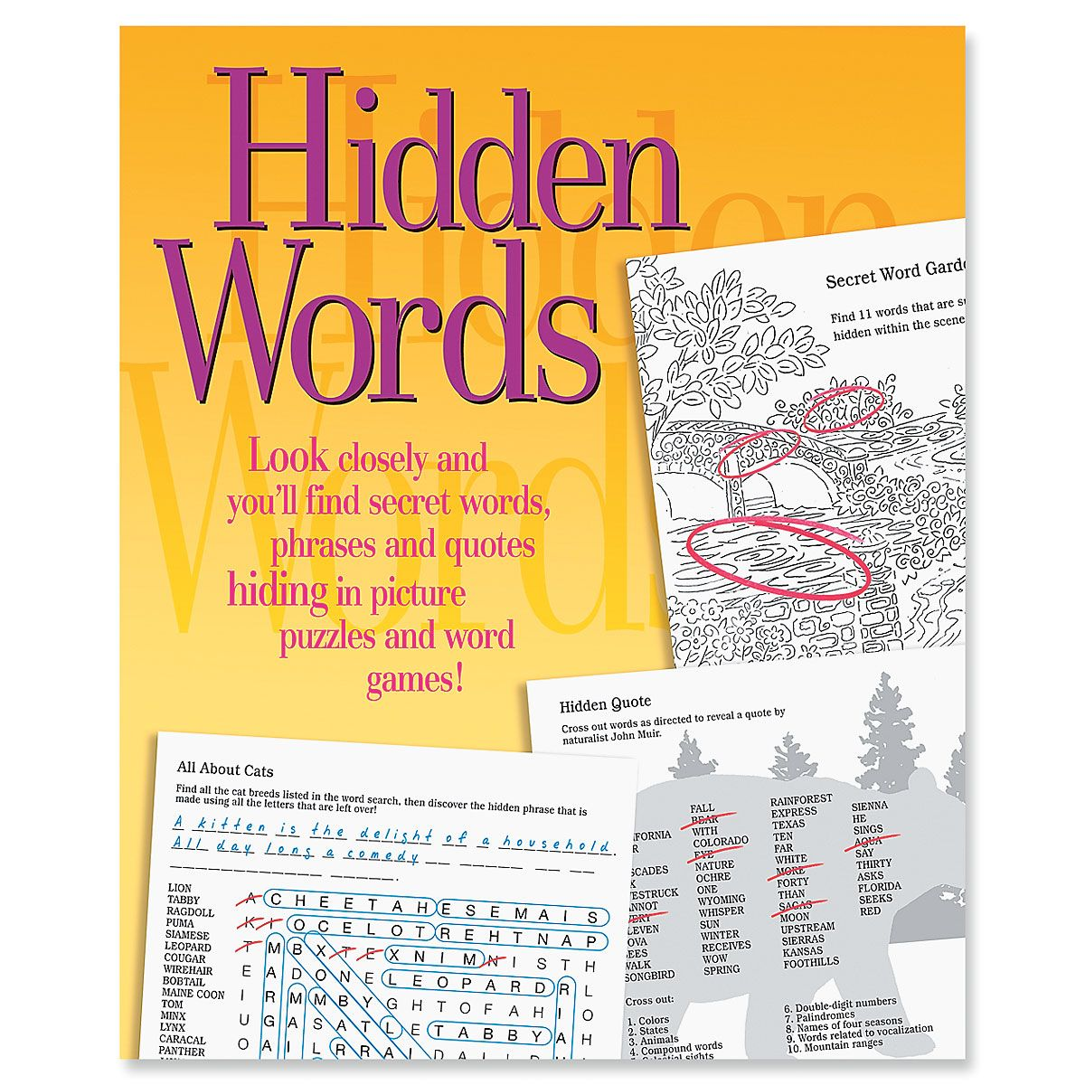 Hidden Words Search Book