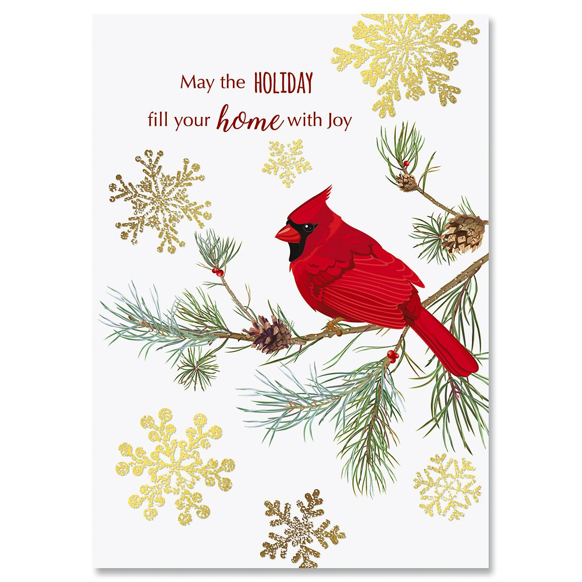 cardinal in snow christmas cards current catalog jpg 1200x1200 cardinal christmas cards - Current Christmas Cards