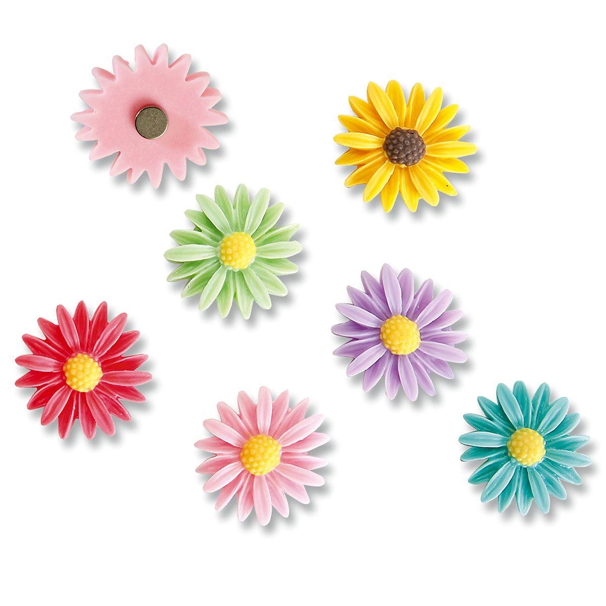 Decorative Daisies Magnet Set