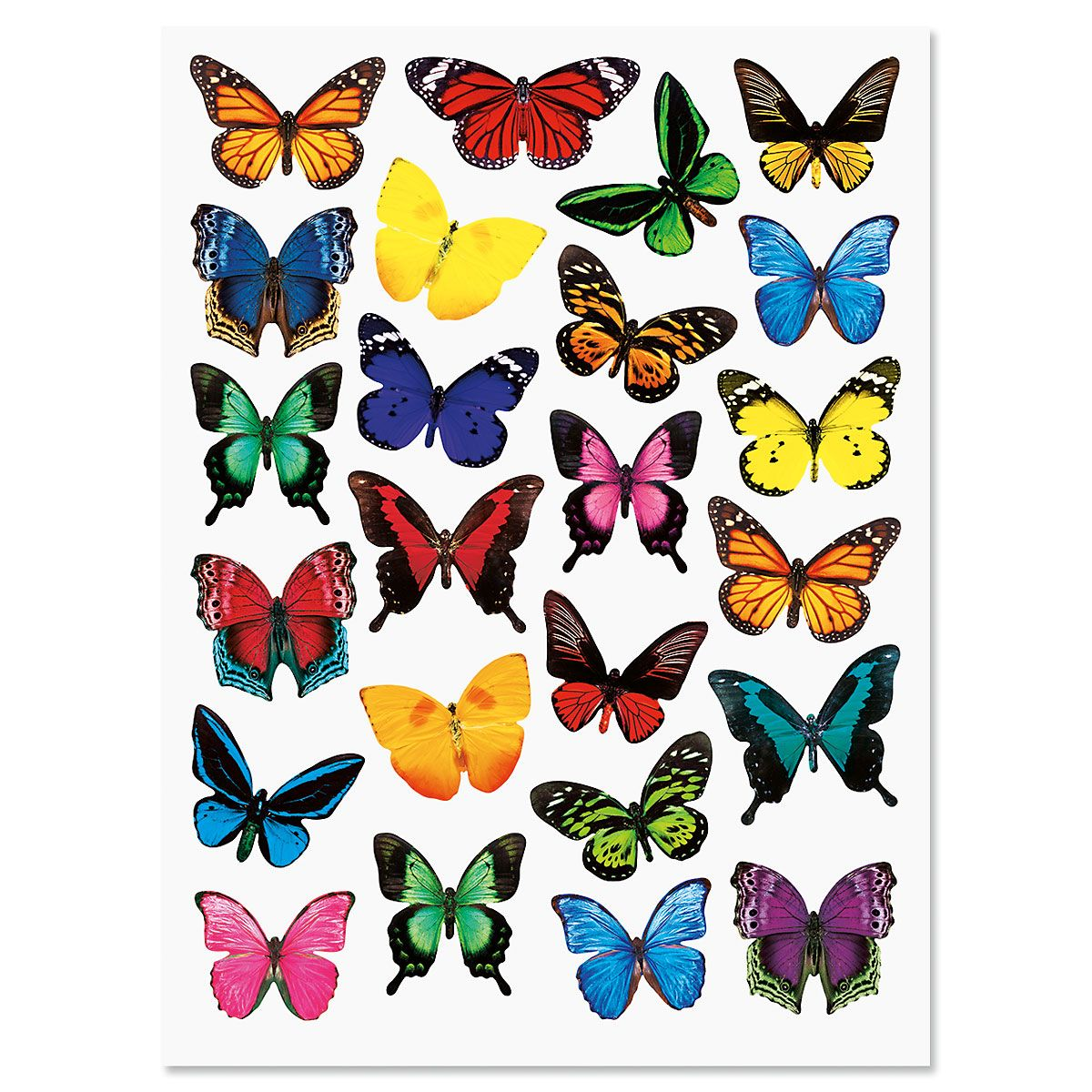 Photo Butterfly Stickers