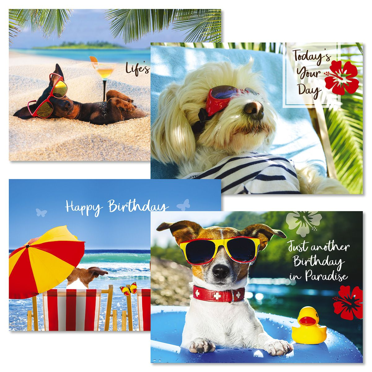 Paradise Dogs Birthday Cards and Seals