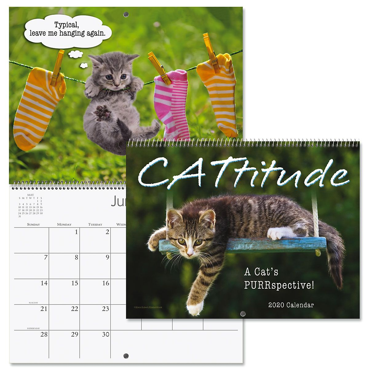2020 CATtitude Wall Calendar