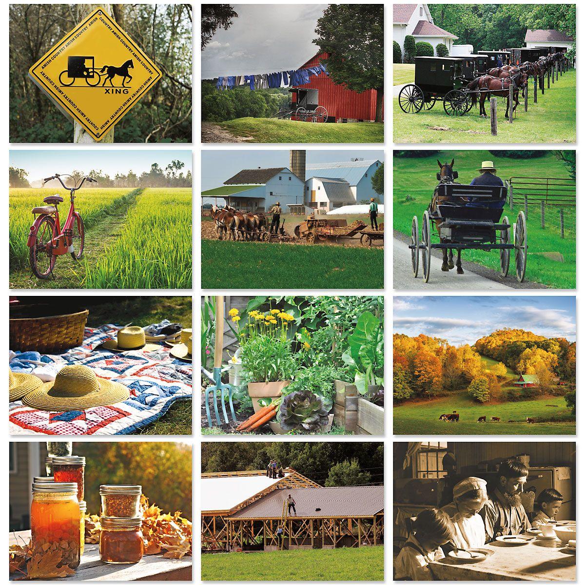 2020 Amish Wall Calendar