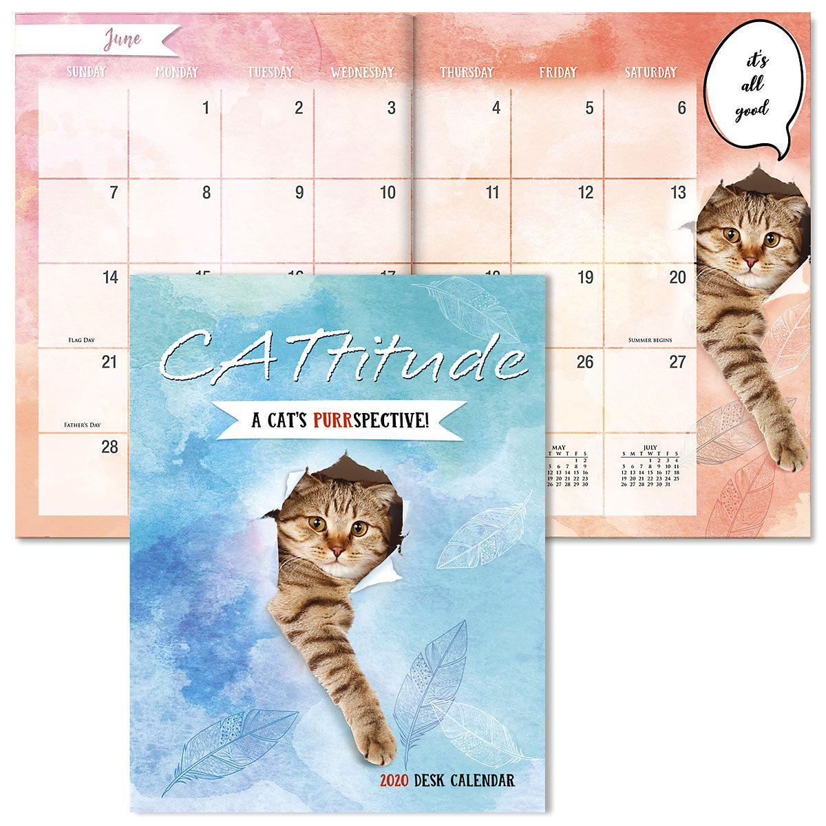 2020 CATtitudes Desk Calendar