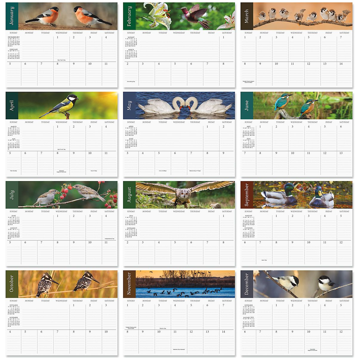 2020 Bird Lovers Big Grid Planning Calendar
