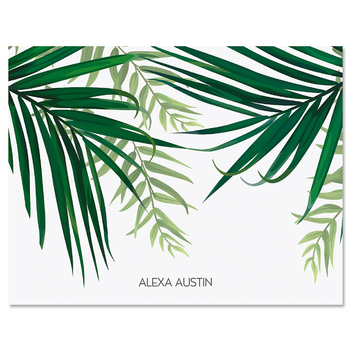 Monstera Palm Personalized Note Cards