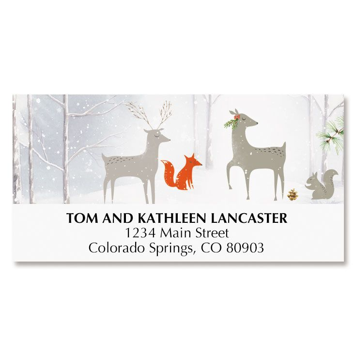 Snow Everywhere Deluxe Address Labels