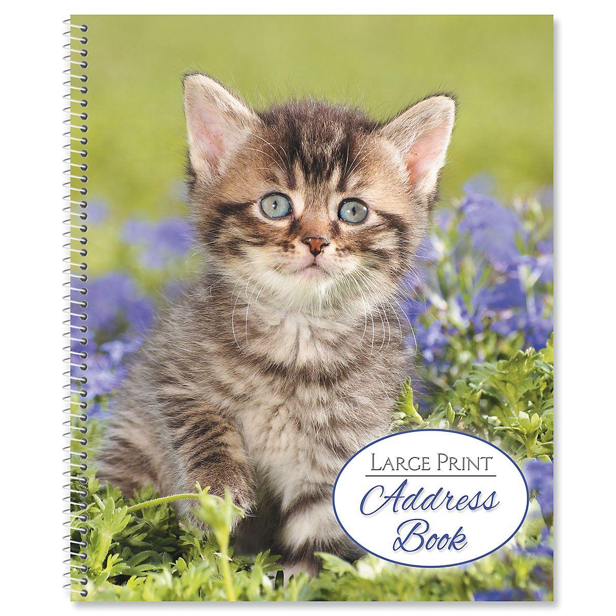 Playful Kitten Large Print Address Book