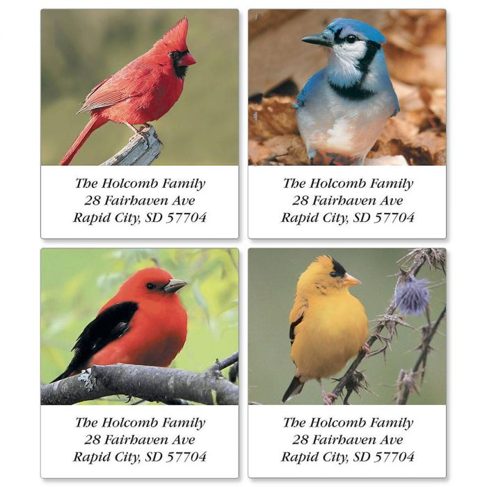 Beautiful Birds Select Address Labels  (4 designs)