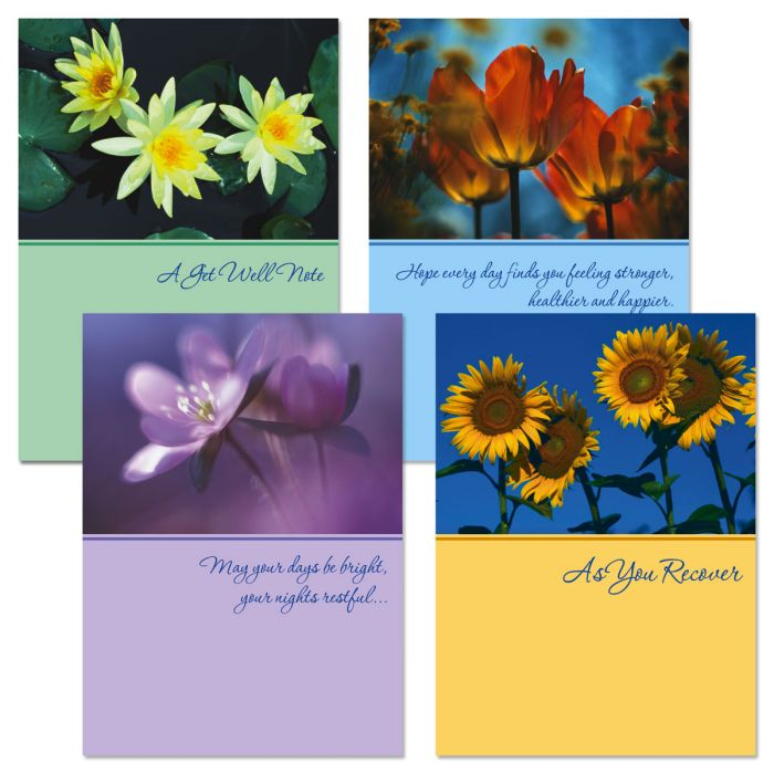 Get Well Wishes Cards & Seals